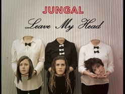 Image for Jungal