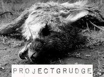 ProjectGrudge