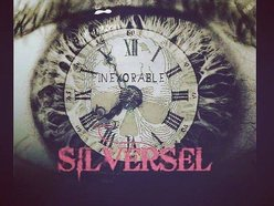 Image for Silversel