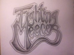 Image for Fighting Meeces