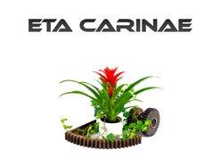 Image for Eta Carinae