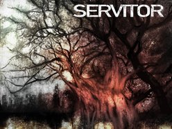 Image for Servitor