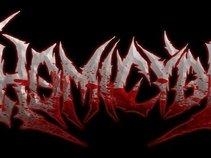 HoMiCyDe
