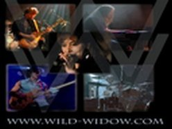 Image for Wild Widow