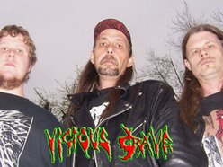 Image for Vicious Grave