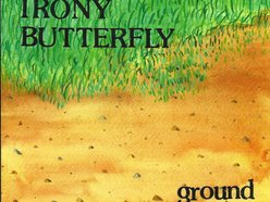 Image for irony butterfly
