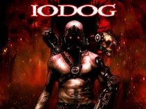 Iodog
