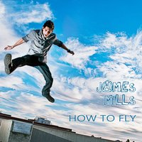 1326234405 how to fly cover 2 copy