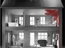 The Dollhouse Suicides