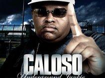 CALOSO360