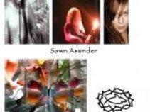 Sawn Asunder