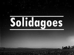 Image for Solidagoes