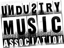 Image for Undustry Music