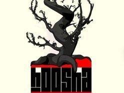 Image for HOOSHA