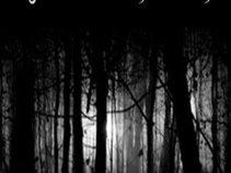 My Enchanted Tales