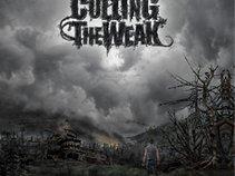 Culling The Weak