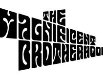 THE MAGNIFICENT BROTHERHOOD