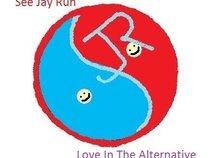 See Jay Run