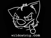 Wildcat Rig