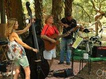 The RonJohn Band