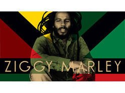 Image for Ziggy Marley