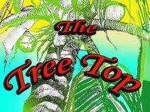 Asaf barak & the tree top