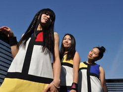 Image for Shonen Knife