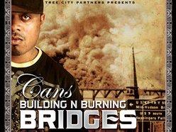 Image for Bridges
