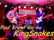 Paul Krawl and the KingSnakes