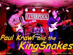 Image for Paul Krawl and the KingSnakes