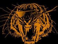 Bring The Tiger