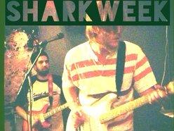 Image for SharkWeek