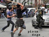 Pious Dogs