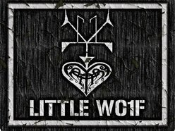 Image for Little Wolf