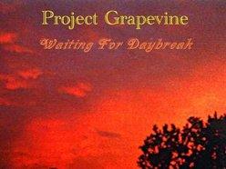 Project Grapevine