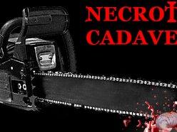 NECROTIC CADAVER