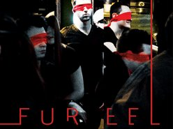 Image for Fur Eel