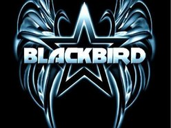 Image for Blackbird