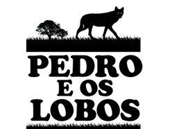 Image for Pedro e os Lobos