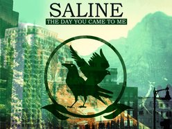 Image for Saline