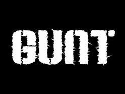 Image for Gunt