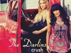 Image for The Darlins