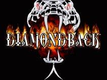 Diamondback Band of CT