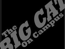 The Big Cat On Campus