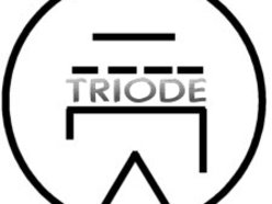 Image for Triode