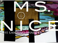 Image for The Lamping Shades