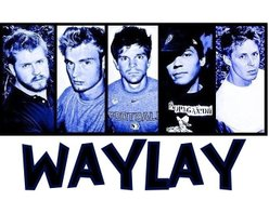 Image for Waylay