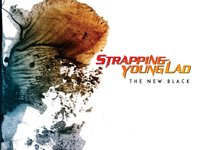 Image for Strapping Young Lad
