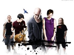 Image for The Devin Townsend Project