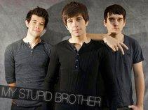 MY STUPID BROTHER